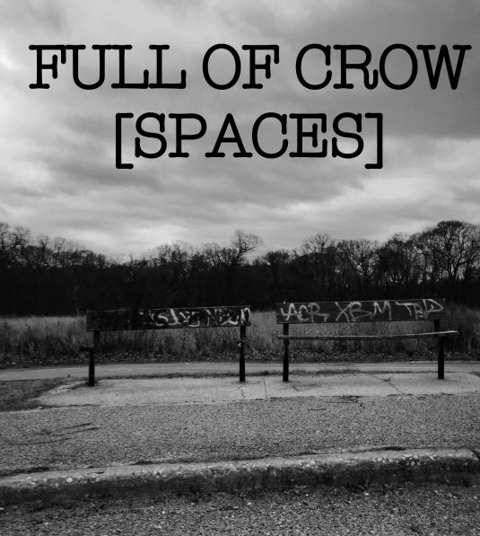 SPACES at Full Of Crow Press